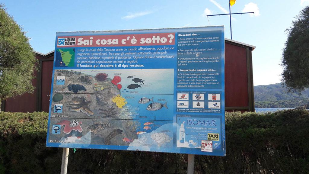 vacanze-disabili-isola-elba22