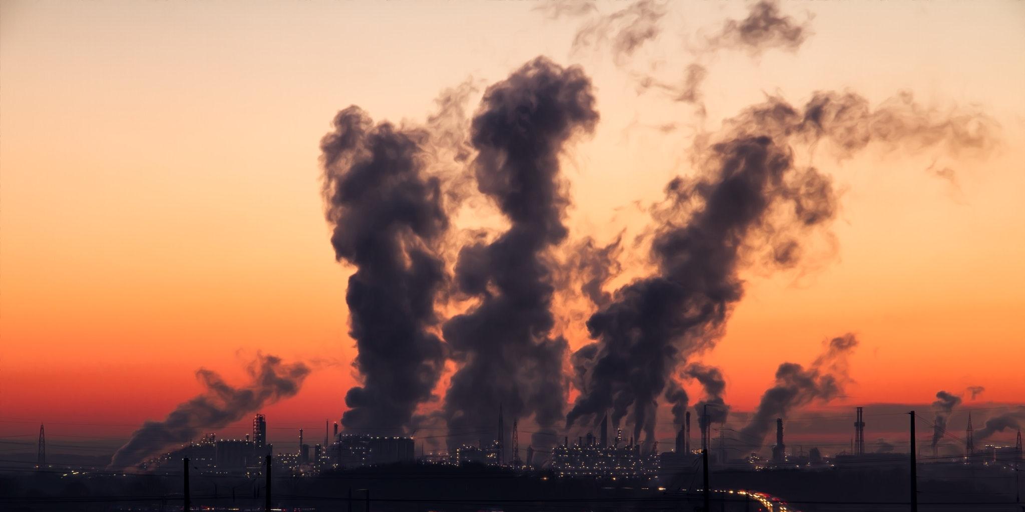 Progetto educativo per la scuola primaria e secondaria con approfondimento su tematiche relative all'inquinamento e all'effetto serra