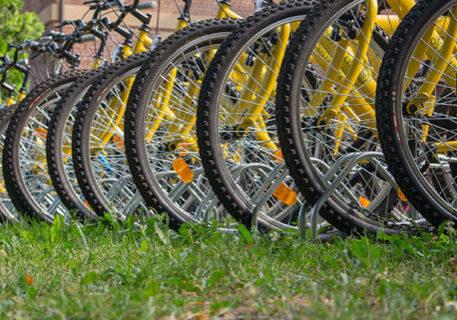 meta-visite-guidate-cicloturismo